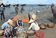 Thiên Đường Hải Sản - Chợ Cá Quan Lạn