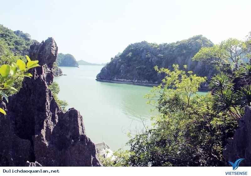 Đảo Ba Mùn- Viên Ngọc Xanh Của Quan LạnB